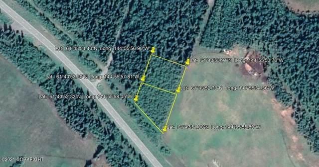 L46-47 Pleasant Road (No Road), Copper Center, AK 99573 (MLS #21-14061) :: Wolf Real Estate Professionals