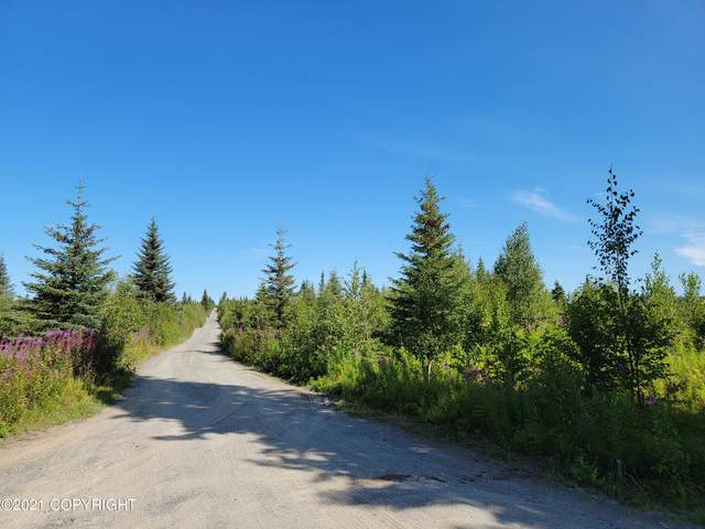 Lot 4 Hannah Rene Rd, Anchor Point, AK 99556 (MLS #21-14283) :: Wolf Real Estate Professionals