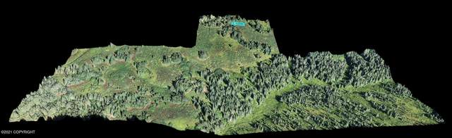 62409 Crossman Ridge Road, Homer, AK 99603 (MLS #21-14287) :: Wolf Real Estate Professionals