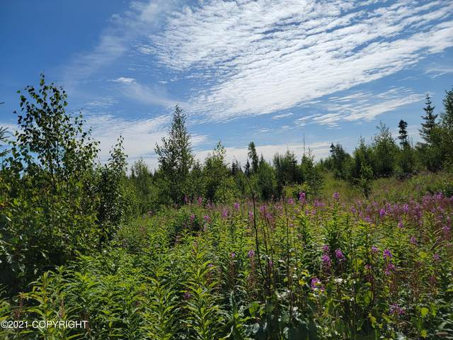 Lot 3 Hannah Rene Rd, Anchor Point, AK 99556 (MLS #21-14402) :: Wolf Real Estate Professionals