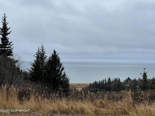 28245 Sterling Highway, Anchor Point, AK 99556 (MLS #21-14427) :: Daves Alaska Homes