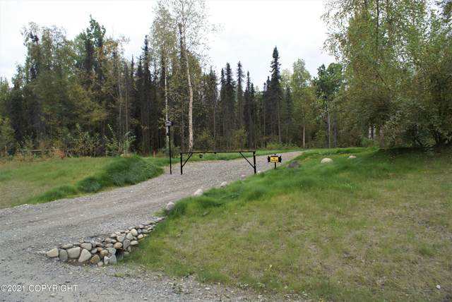 20150 E Caswell Lakes Road, Willow, AK 99688 (MLS #21-14471) :: Wolf Real Estate Professionals