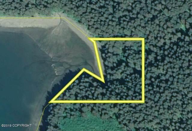 000 Seldovia Bay, Seldovia, AK 99663 (MLS #21-1451) :: Powered By Lymburner Realty