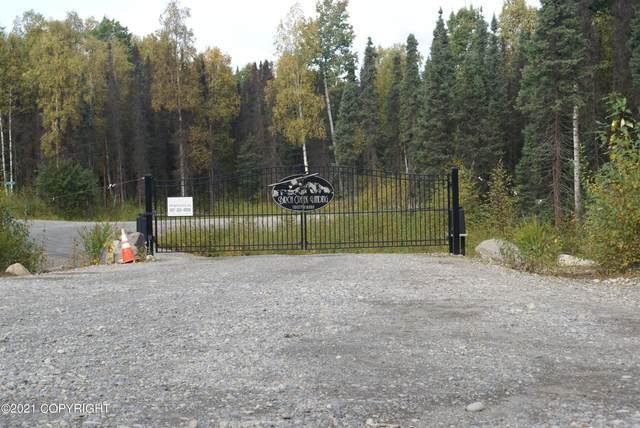 L7 E Kitty Hawk Circle, Talkeetna, AK 99676 (MLS #21-14569) :: Daves Alaska Homes