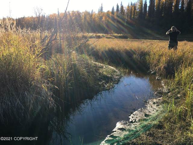 C004 No Road, Willow, AK 99688 (MLS #21-1489) :: RMG Real Estate Network | Keller Williams Realty Alaska Group