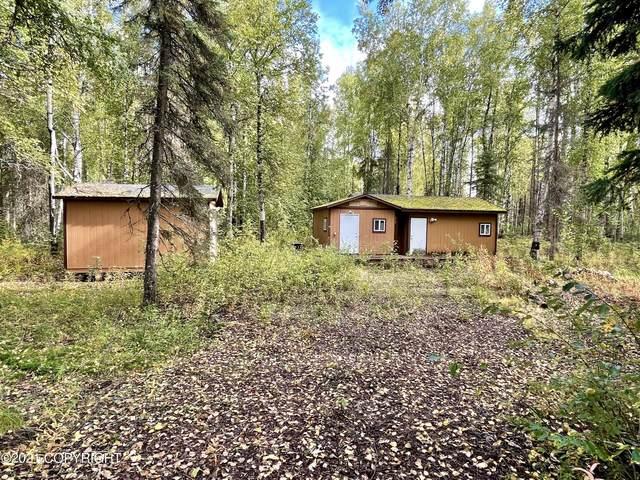 47459 S Barehook Street, Willow, AK 99688 (MLS #21-14897) :: Daves Alaska Homes