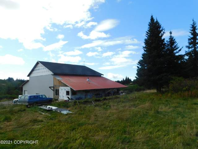 61255 Ohlson Mtn R Lots 1, 2, 3 , 4, Homer, AK 99603 (MLS #21-14902) :: Wolf Real Estate Professionals