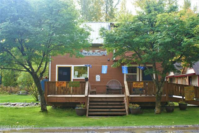 13512 E First Street, Talkeetna, AK 99676 (MLS #21-14976) :: Wolf Real Estate Professionals