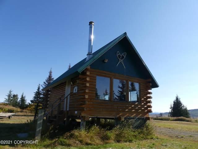 17750 Woodhead Street, Ninilchik, AK 99639 (MLS #21-14991) :: Wolf Real Estate Professionals