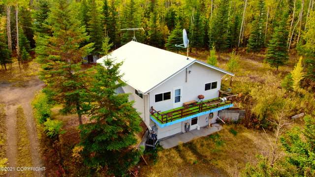 L2 Wolf Point Road, Copper Center, AK 99573 (MLS #21-14996) :: Wolf Real Estate Professionals