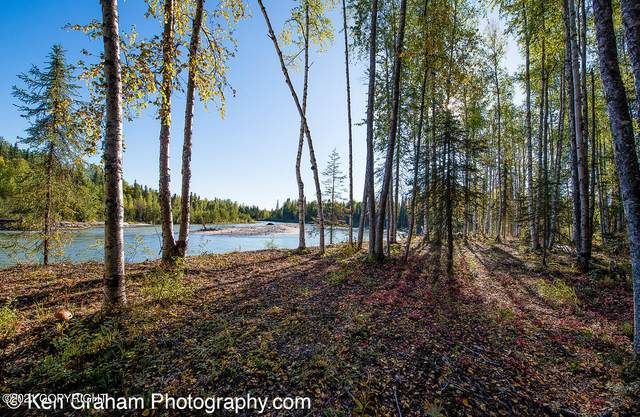 19356 E Peregrine Court, Willow, AK 99688 (MLS #21-15029) :: Wolf Real Estate Professionals