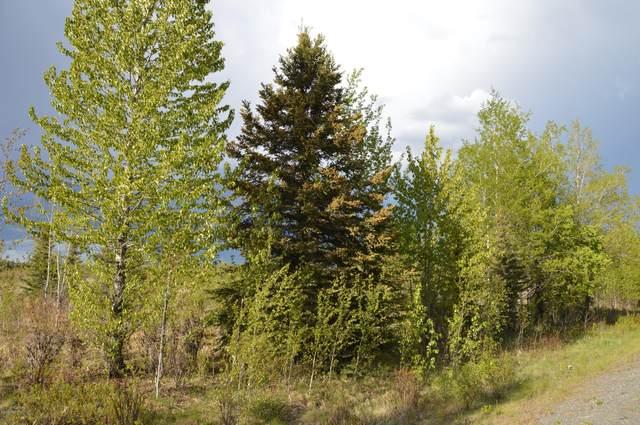 L33 Skylark Lane, Soldotna, AK 99669 (MLS #21-1519) :: Daves Alaska Homes