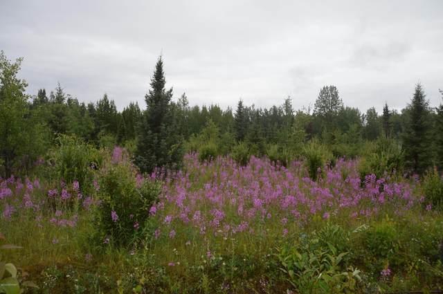 L35 Skylark Lane, Soldotna, AK 99669 (MLS #21-1521) :: Daves Alaska Homes