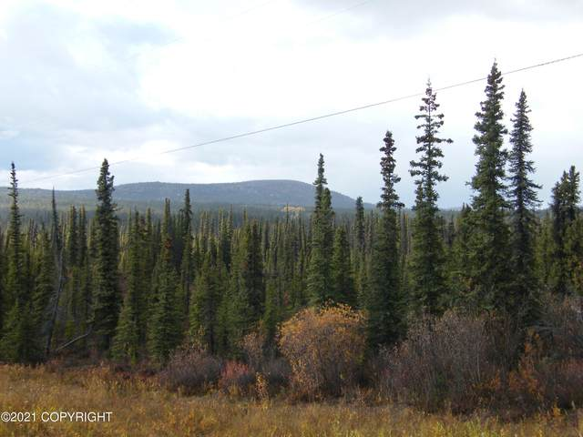 Mile 115 Richardson Highway, Glennallen, AK 99588 (MLS #21-15224) :: Wolf Real Estate Professionals