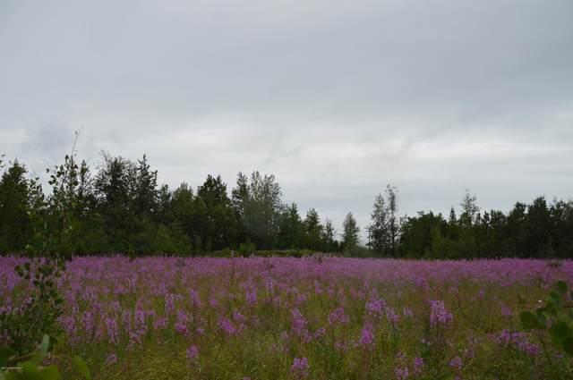 L37 Skylark Lane, Soldotna, AK 99669 (MLS #21-1523) :: Daves Alaska Homes