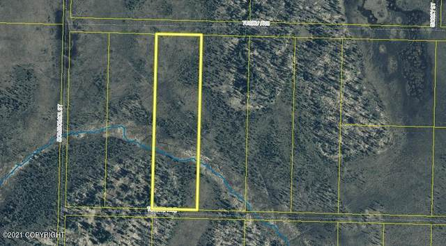 Tr9 Tomski Avenue, Anchor Point, AK 99556 (MLS #21-15243) :: Wolf Real Estate Professionals