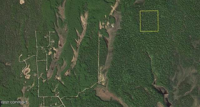 Pcl B2 Section Line (No Road), Remote, AK 99000 (MLS #21-15291) :: Wolf Real Estate Professionals