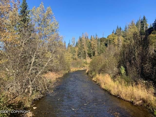 L5 Katana Drive, Anchor Point, AK 99556 (MLS #21-15327) :: Daves Alaska Homes
