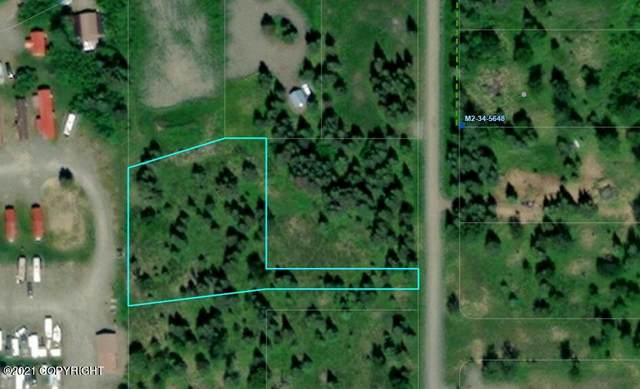 15679 Conrad Street, Ninilchik, AK 99639 (MLS #21-15334) :: Wolf Real Estate Professionals