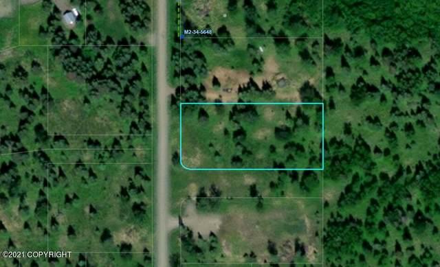 L4 B5 Conrad Street, Ninilchik, AK 99639 (MLS #21-15335) :: Wolf Real Estate Professionals