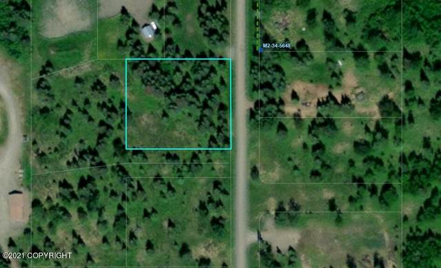 L4 B4 Conrad Street, Ninilchik, AK 99639 (MLS #21-15336) :: Wolf Real Estate Professionals
