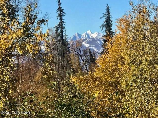 507 N Mary Carey, Trapper Creek Lane, Remote, AK 99000 (MLS #21-15372) :: Wolf Real Estate Professionals