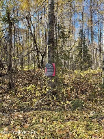 49820 S Dolly Varden Drive, Willow, AK 99688 (MLS #21-15448) :: Daves Alaska Homes