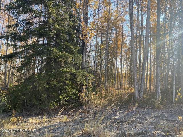 12471 N Crystal Lake Road, Willow, AK 99688 (MLS #21-15474) :: Daves Alaska Homes