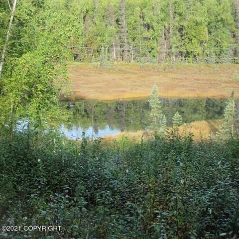 4876 S Echo Lake Drive, Big Lake, AK 99652 (MLS #21-15539) :: RMG Real Estate Network | Keller Williams Realty Alaska Group