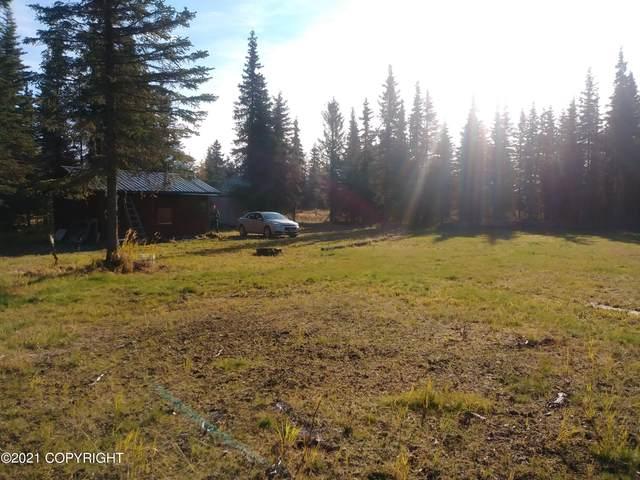 16089 Reba Street, Ninilchik, AK 99639 (MLS #21-15594) :: Wolf Real Estate Professionals