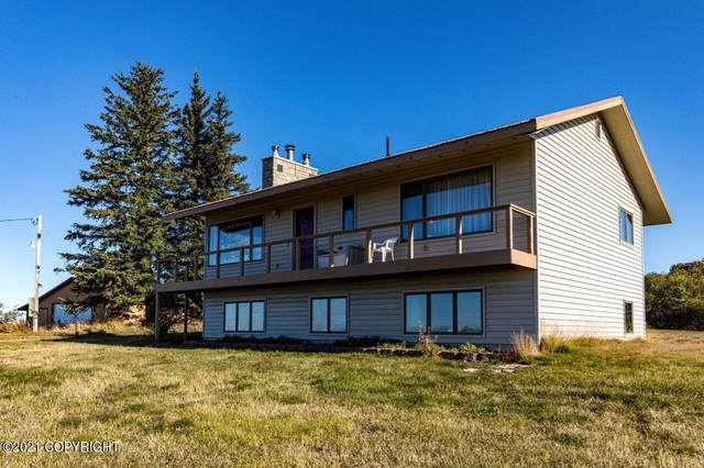 35520 N Fork Road, Anchor Point, AK 99556 (MLS #21-15601) :: Wolf Real Estate Professionals