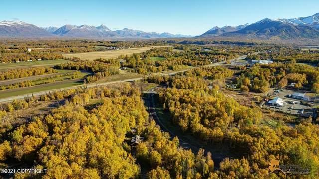 L1 B1 E Dalwhinnie Circle, Palmer, AK 99645 (MLS #21-15646) :: Daves Alaska Homes
