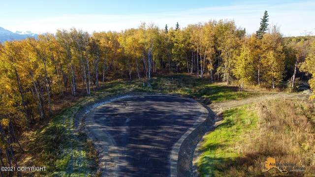 L3 B1 E Dalwhinnie Circle, Palmer, AK 99645 (MLS #21-15649) :: Daves Alaska Homes