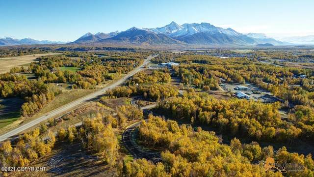 L5 B1 N Dalmore Circle, Palmer, AK 99645 (MLS #21-15650) :: Daves Alaska Homes