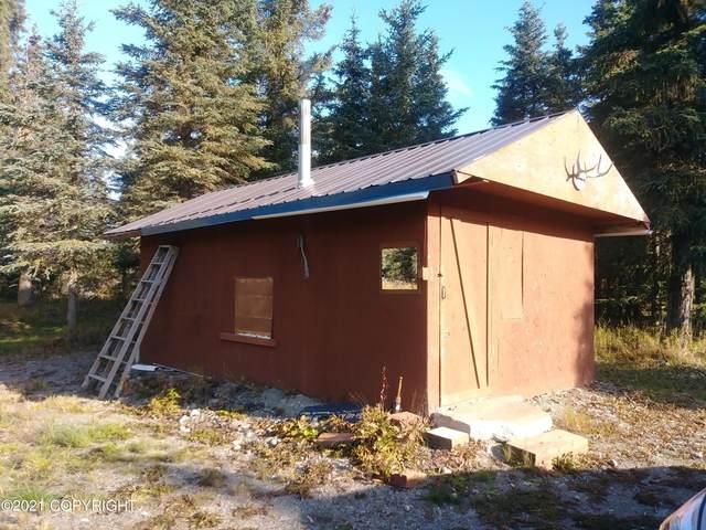 16089 Reba Street, Ninilchik, AK 99639 (MLS #21-15651) :: Wolf Real Estate Professionals