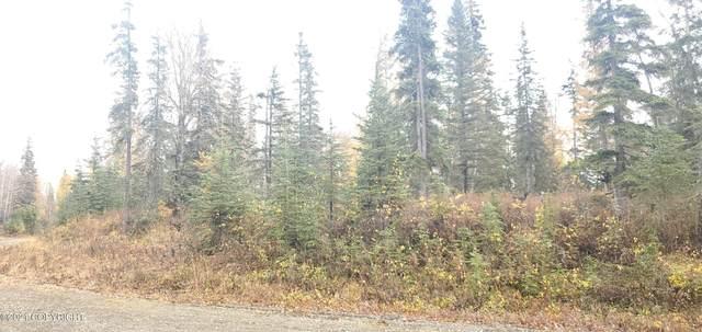 53025 Panatella Court, Nikiski/North Kenai, AK 99635 (MLS #21-15827) :: Wolf Real Estate Professionals