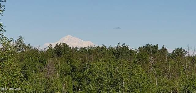 14791 Susitna Landing Road, Willow, AK 99688 (MLS #21-16075) :: Team Dimmick