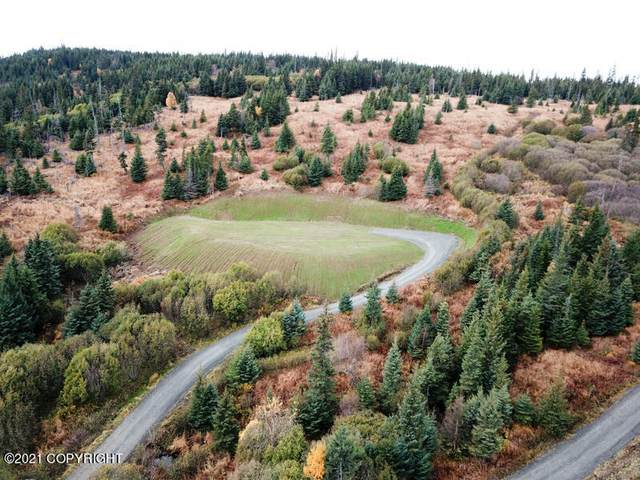 38425 Fritz Creek Valley Drive, Homer, AK 99603 (MLS #21-16100) :: Wolf Real Estate Professionals