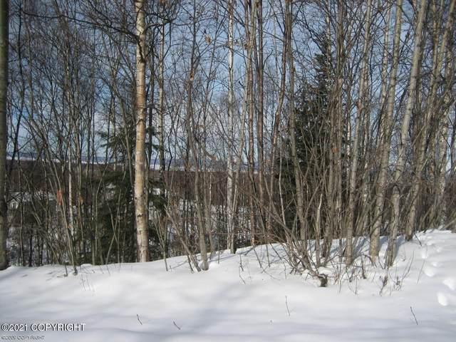L1 B6 Meadow Ridge Court, Chugiak, AK 99567 (MLS #21-1612) :: RMG Real Estate Network | Keller Williams Realty Alaska Group