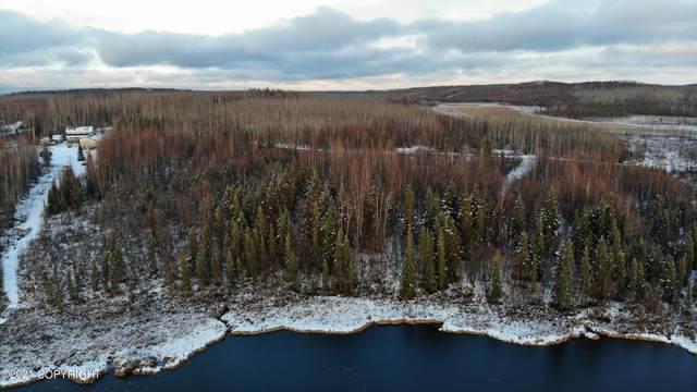 3872 S Pond Lily Lane, Big Lake, AK 99652 (MLS #21-16134) :: RMG Real Estate Network | Keller Williams Realty Alaska Group