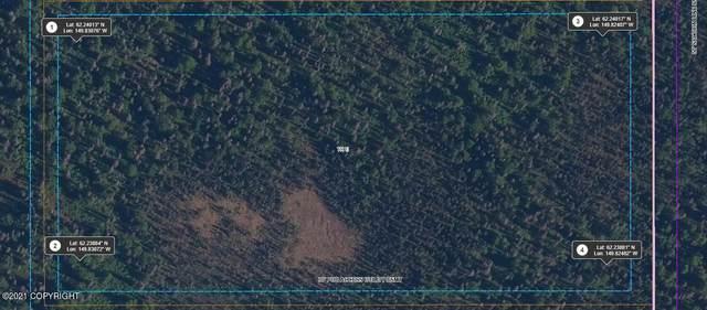 Tr E No Road Trail, Talkeetna, AK 99676 (MLS #21-16193) :: RMG Real Estate Network | Keller Williams Realty Alaska Group