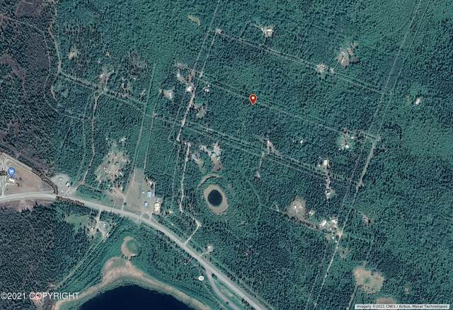 L23&38 B6 Kenny Lake Village, Chitina, AK 99573 (MLS #21-16217) :: Wolf Real Estate Professionals