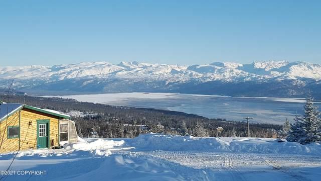 50972 Mossberry Court, Homer, AK 99603 (MLS #21-16264) :: Alaska Realty Experts