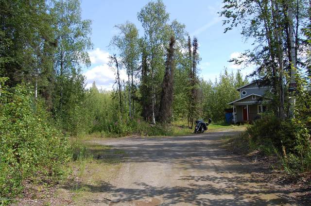 11763 W Parks Highway, Big Lake, AK 99652 (MLS #21-16268) :: Daves Alaska Homes