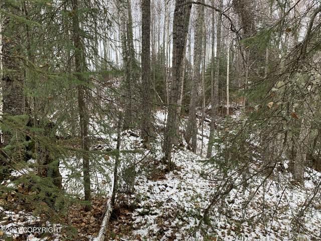 4542 S Gracie Circle, Big Lake, AK 99652 (MLS #21-16275) :: Wolf Real Estate Professionals