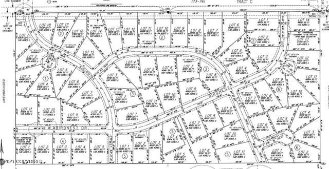 LOT 14 BK2 Suslositna Place, Wasilla, AK 99654 (MLS #21-16346) :: Daves Alaska Homes