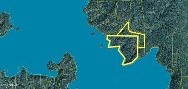 L2 B1 Mariners Walk & Us Survey 3023, Homer, AK 99603 (MLS #21-16397) :: Berkshire Hathaway Home Services Alaska Realty Palmer Office