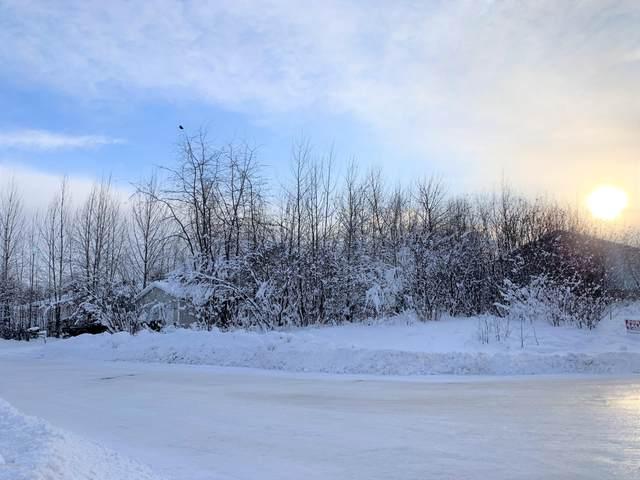 L1 B4 Petersburg Street, Anchorage, AK 99507 (MLS #21-1646) :: Wolf Real Estate Professionals