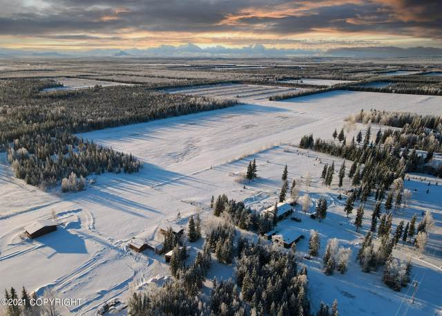 000 Montana Drive, Delta Junction, AK 99737 (MLS #21-1661) :: Wolf Real Estate Professionals
