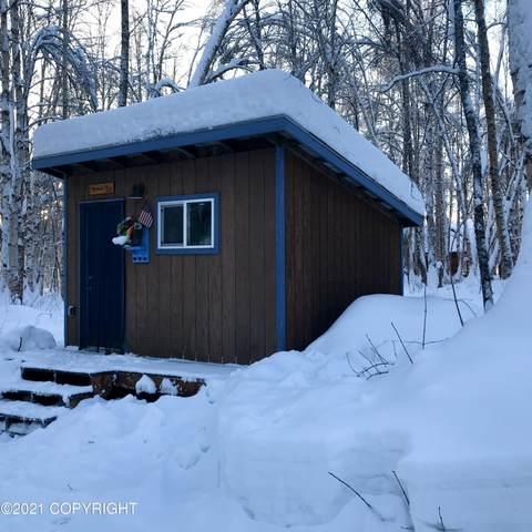49587 S Hunter Drive, Willow, AK 99688 (MLS #21-1857) :: RMG Real Estate Network | Keller Williams Realty Alaska Group